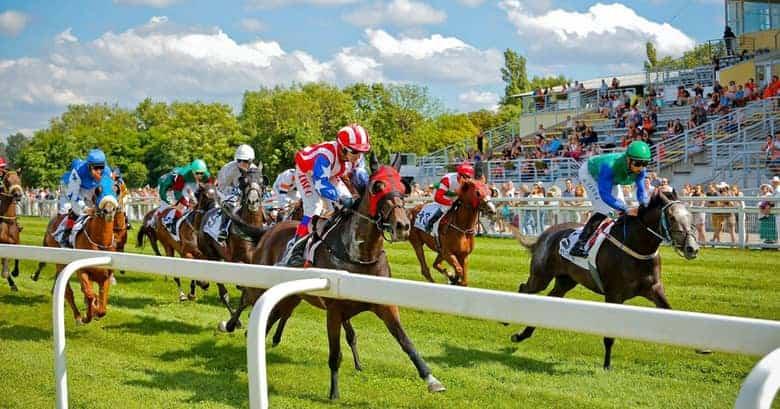 Kincsem Park horse race