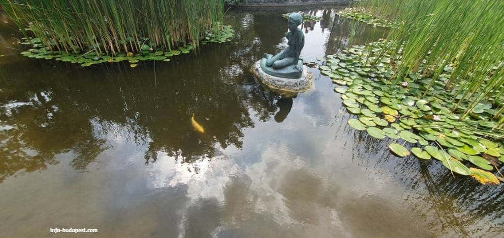 japanese garden, gold fish, staute, lake