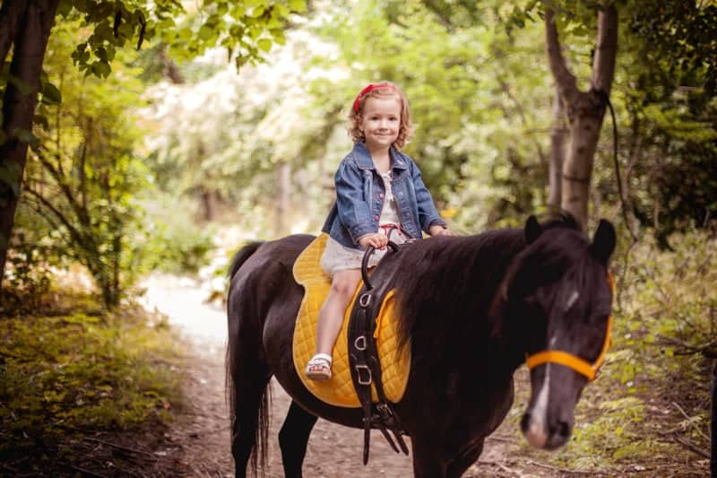 little girl with a pony