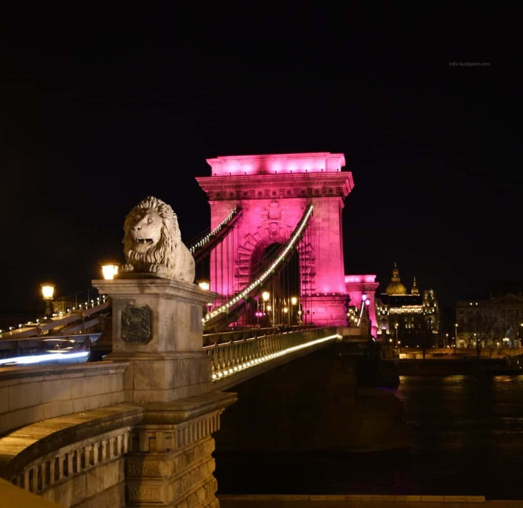 Pink Chain Bridge-January 30, 2020