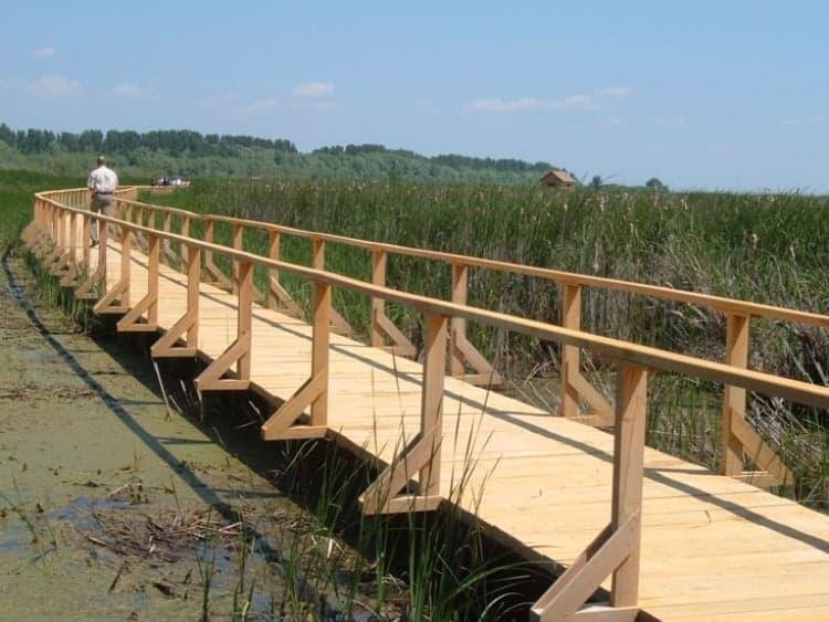 Lake Tisza Water Promenade