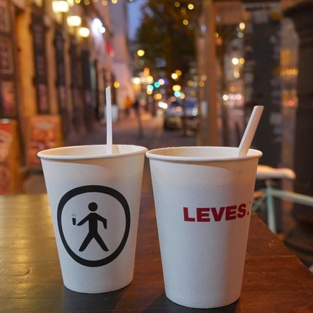 LEVES-Budapest